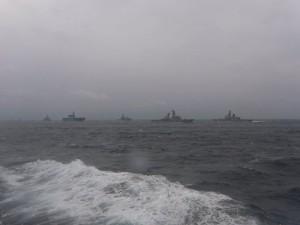 受閲艦艇部隊(手前)と観閲部隊(後ろ)