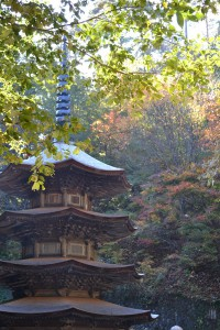 安楽寺八角三重塔と紅葉