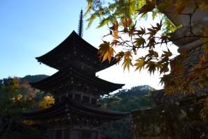 前山寺三重塔3