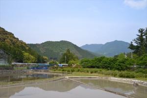 小栗須バス停から田平子峠方面を望む