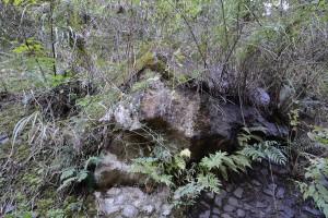 斜面から突き出た大岩