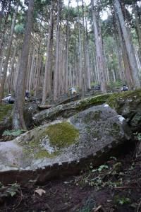 斜面に残された石垣用石材群その一