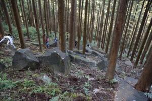 斜面に残された石垣用石材群その二